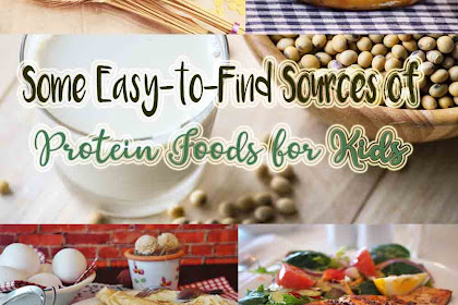 Some Easy-to-Find Sources of Protein Foods for Kids