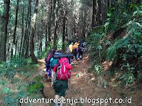 Kisah Mistis Saat Pendakian Gunung (Pengalaman Pribadi)