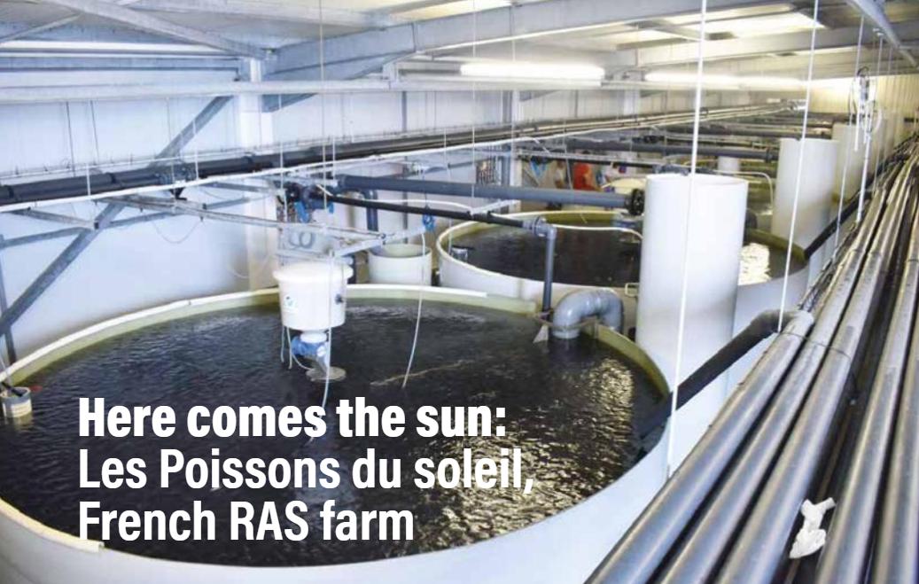 The Aquaculturists: Les Poissons du Soleil: French RAS