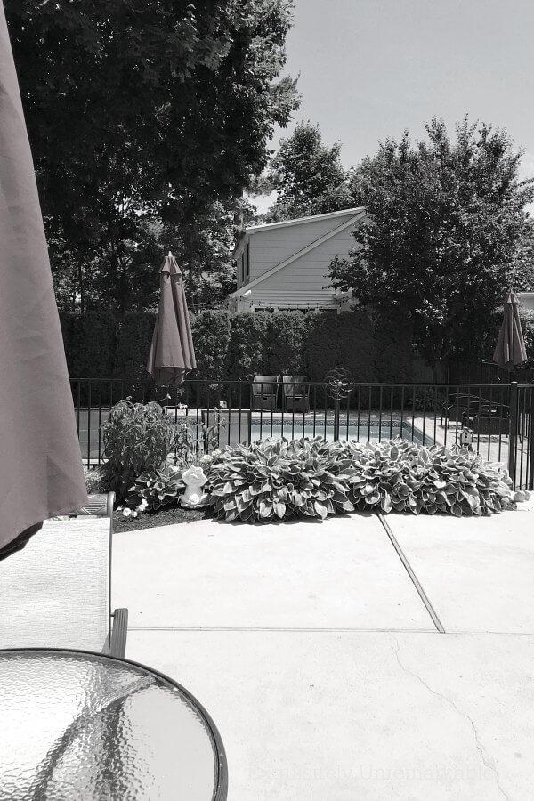 Black And White Photo Of Closed Umbrellas