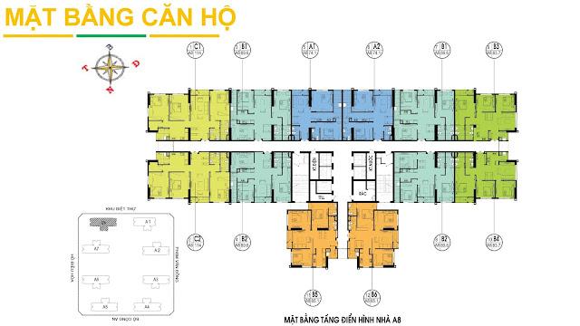 Mặt bằng tầng điển hình tòa A8 dự án An Bình City