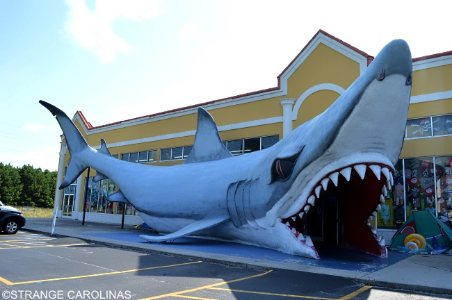 World S Largest Shark Sneads Ferry Nc Strange Carolinas The Travelogue Of The Offbeat
