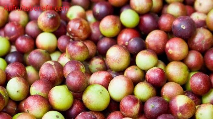 Benefits of camu berry