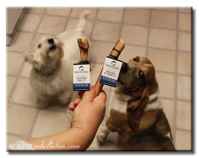 Two Barkworthies Bully Sticks with two dogs