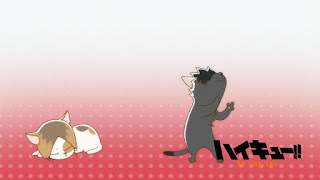Hellominju.com: ハイキュー!! アニメ   音駒アイキャッチ 第4期 黒尾鉄朗   孤爪研磨    Haikyū!! Commercial Break    Hello Anime !