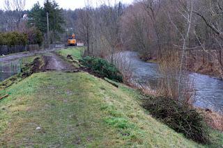 Bischleben Baumfällungen Damm