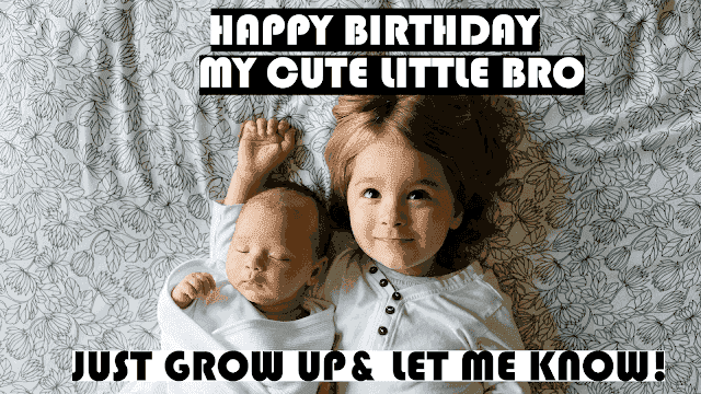 heart touching birthday wishes for brother quotes