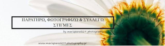 Παρατηρώ, Φωτογραφίζω και Συλλέγω Στιγμές by mariaparask29_photography