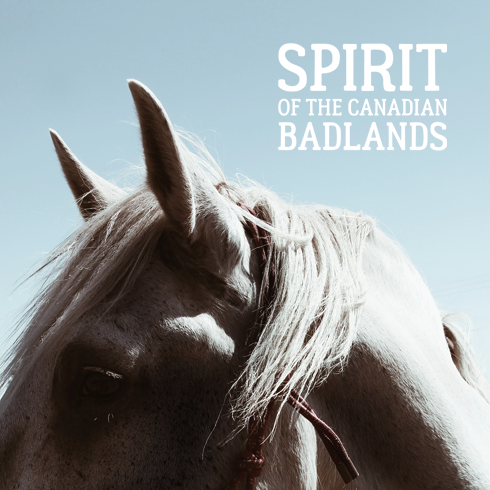 Spirit of the Canadian Badlands Alberta