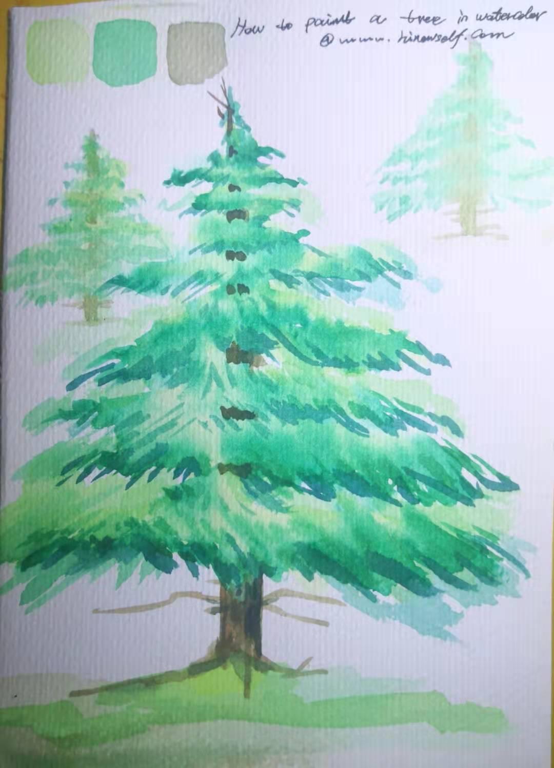 how to draw pine tree