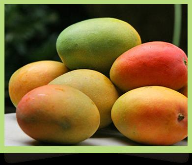Buah-buahan Penambah Darah Efektif untuk Menyembuhkan Penyakit Anemia