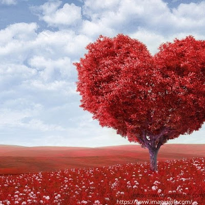 love photo frame download for pc