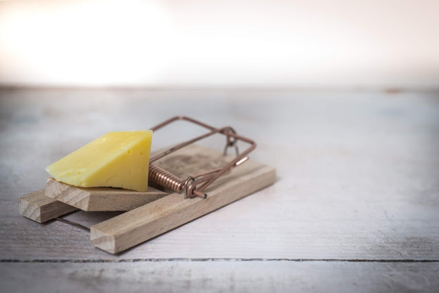 Image showing mouse trap with cheese on it.