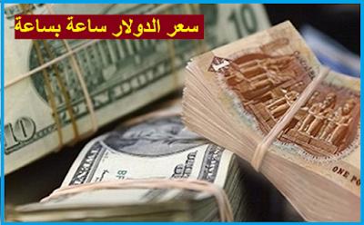 سعر الدولار اليوم في مصر 15-8