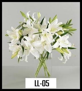Jual Bunga Lili Di Pertukangan Selatan