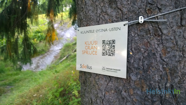 Sibelius tree walk