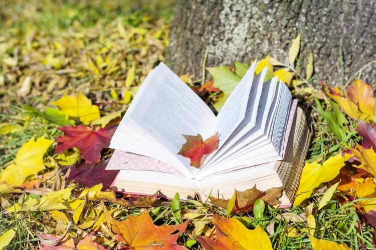 książka na jesień, jesień, fall essentials
