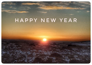 Text reads 'Happy New Year' in pale pink across a burst of sunrise, over frosted grassland