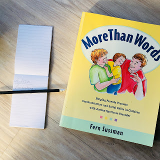 Autism parenting book - More Than Words