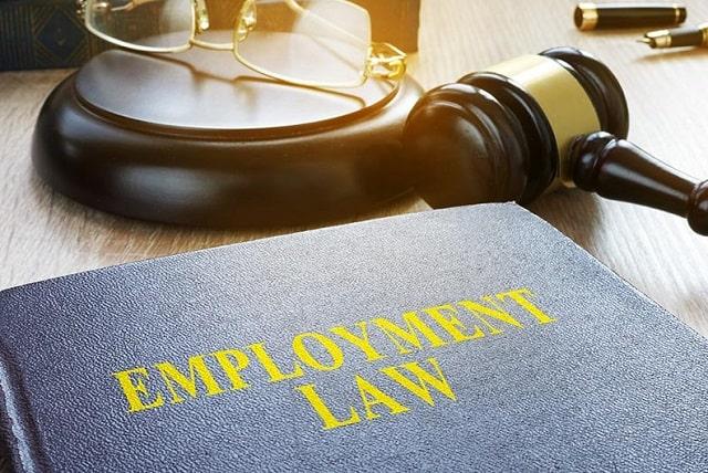 labor law vs employment law work attorney