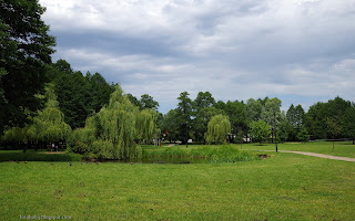 http://fotobabij.blogspot.com/2016/07/bigoraj-park-dworski-staw-zdjecie-uhd.html