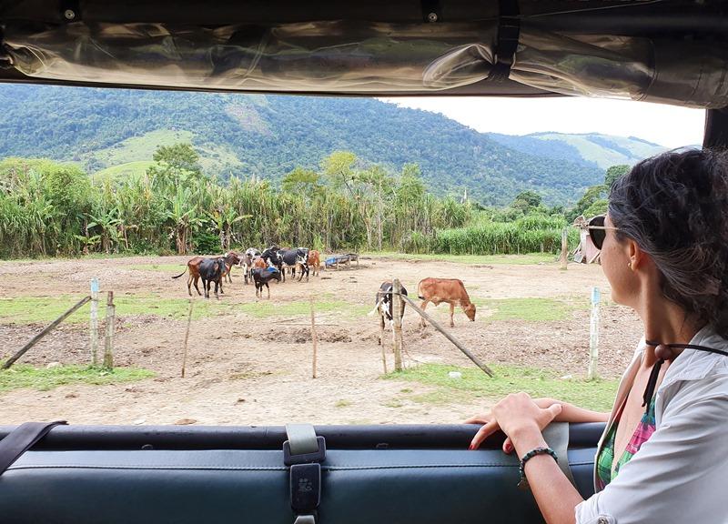 Passeio Jeep Ecológico Paraty