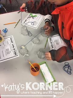 Spider Web Bridges STEM Project