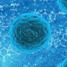 Apart from Corona New Norovirus is common in China