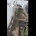 Mari – superlotado: corpos permanecem sendo sepultados nos corredores do Cemitério e população aguarda providências