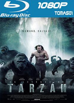 La leyenda de Tarzán (2016) BRRip 1080p
