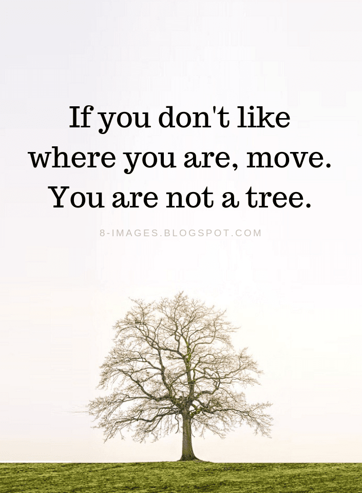Move on quotes, Moving on Quotes,