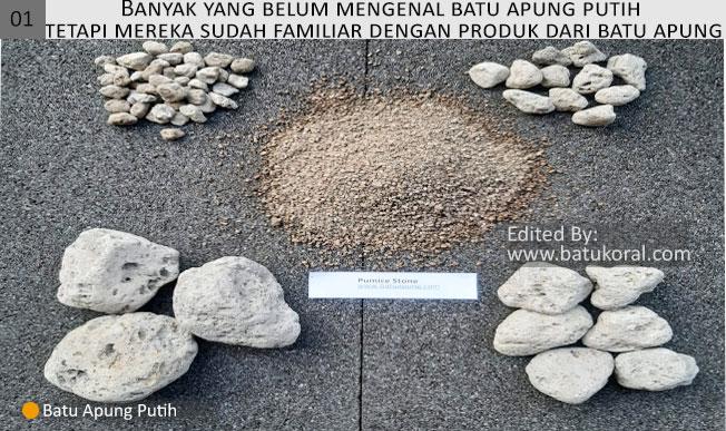 jual batu apung murah