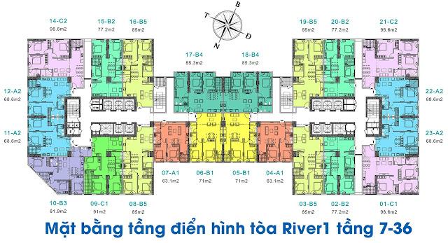 Mặt bằng thiết kế tòa River 1