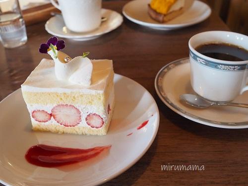 このみのショートケーキ