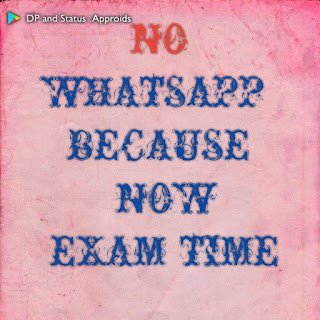 blank whatsapp dp