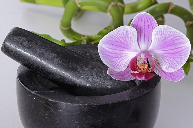 lan ho diep ra hoa may lan trong nam