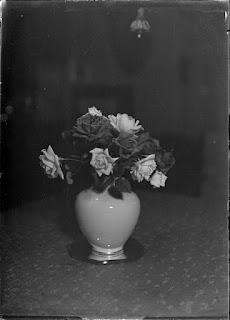 Stillleben Blumenvase mit Rosen, Glasnegativ 1930-1942