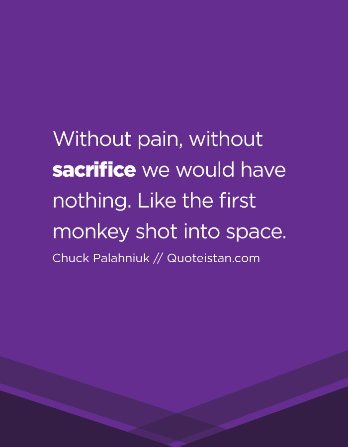 Without pain, without sacrifice we would have nothing. Like the first monkey shot into space.