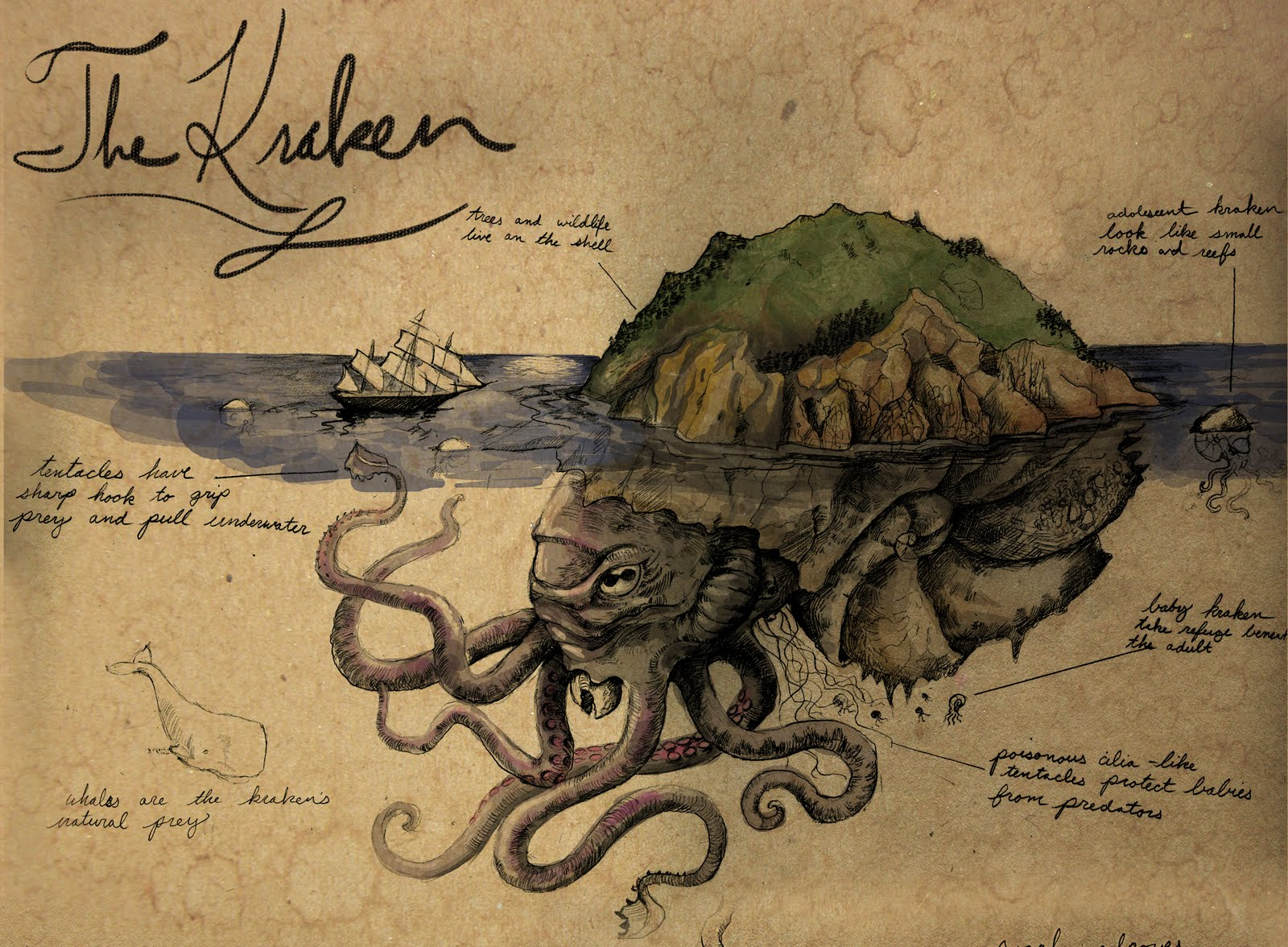 Wasted Talents: The Kraken
