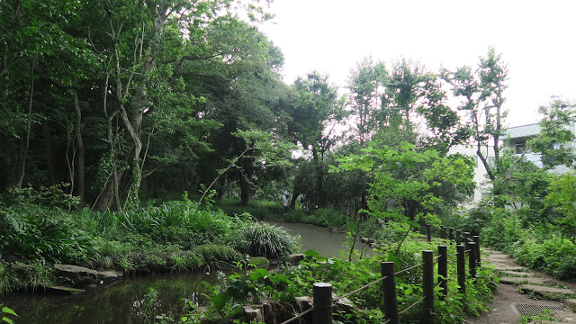 Rinshinomori park trail