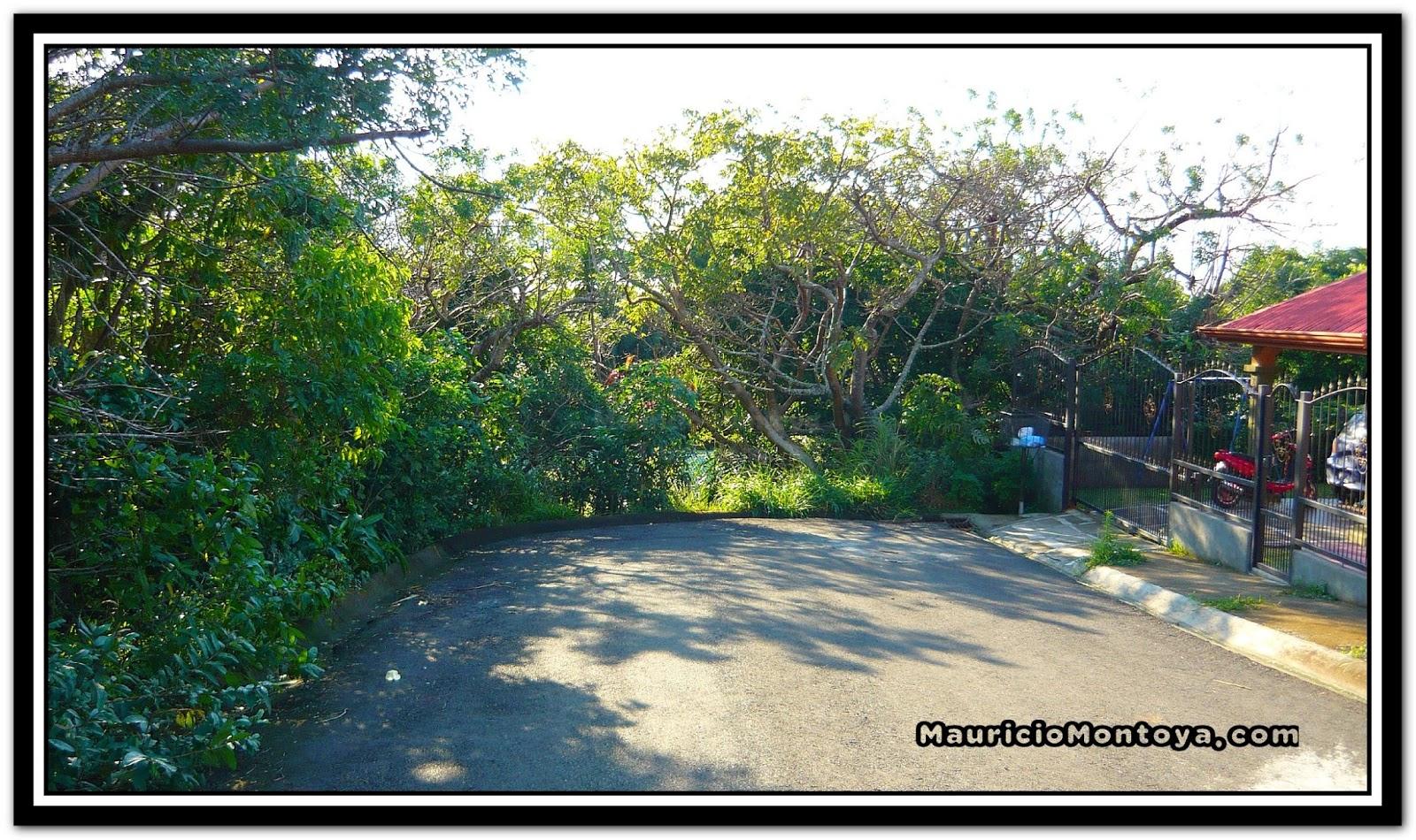 Calles De Tilarán Guanacaste