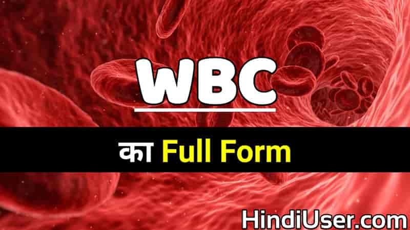 WBC Ka Full Form