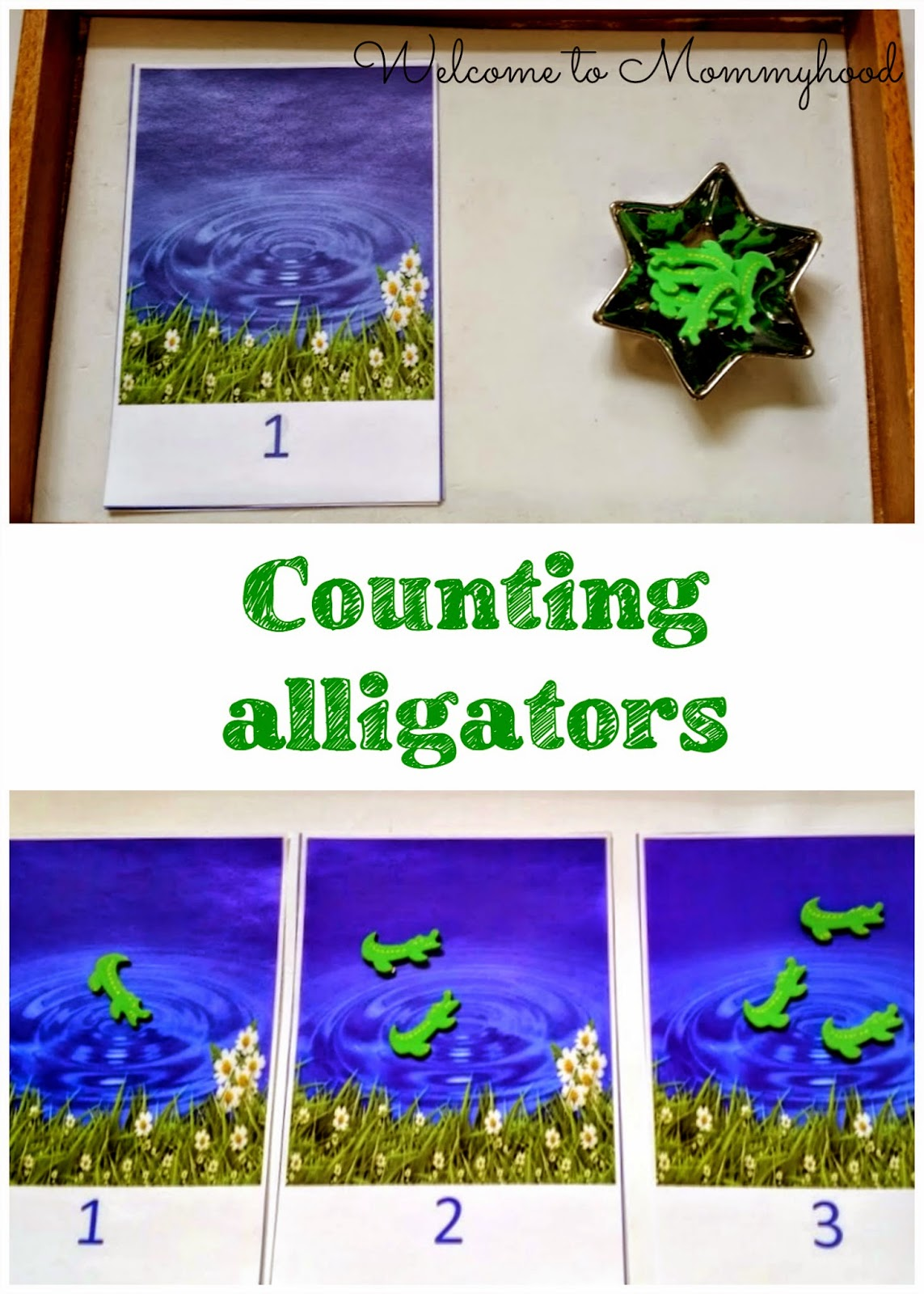 Alligator themed toddler and preschool activities - Welcome to Mommyhood