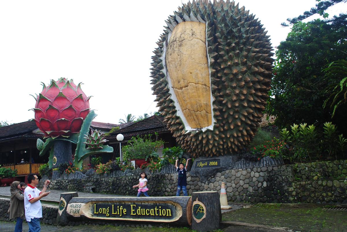 13 Tempat Wisata Di Bogor Yang Menarik Untuk Dikunjungi