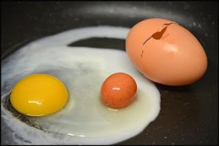 di Dalam Telur Ini Ada Telur Utuh Berkulit!