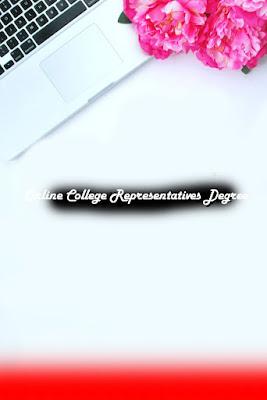 Online College Representatives Degree