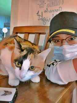 Deretan K-Pop Idol Pecinta Kucing