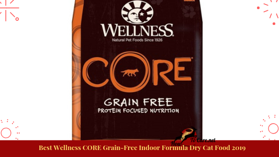 Wellness CORE Grain-Free Chicken, Turkey, and Chicken Meal Indoor Formula Dry Cat Food. With deboned chicken as the absolute first fixing, this supplement thick, sans grain formula contains all the protein expected to enable your indoor feline to keep up slender muscles and a perfect body condition.