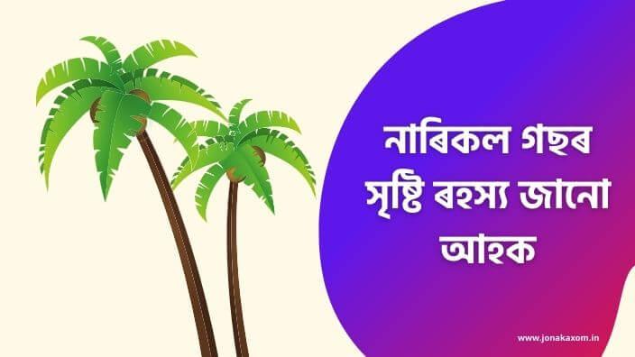 Hindu Mythological Story - The Origin of Coconut Tree in Assamese