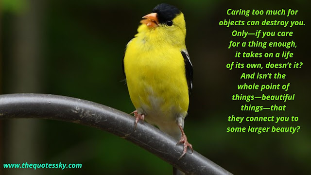 American Goldfinch Bird Quotes [ 2021 ]